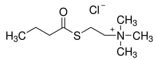 Butyrylthio)ethyl)trimethylammonium chloride