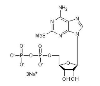 Adp Ez Login >> 2 Methylthio Adp Trisodium Salt Cas 475193 31 8 Scbt