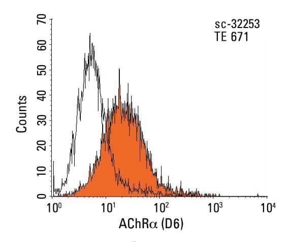 Achr Antibody D6 Scbt Santa Cruz Biotechnology