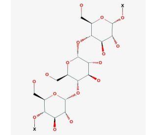 Amylose from potato | CAS 9005-82-7 | SCBT - Santa Cruz Biotechnology