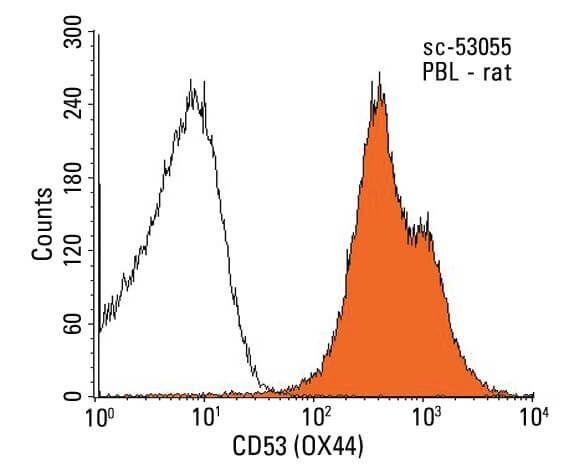 cd53 cd53