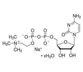 Citicoline sodium salt hydrate | CAS 33818-15-4 | SCBT