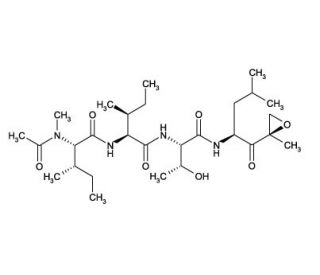 Epoxomicin: sc-201298...