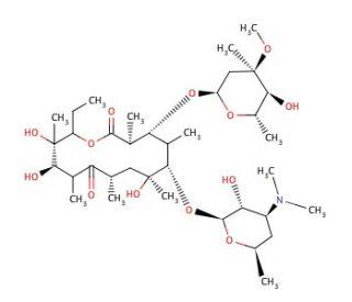 Erythromycin A dihydrate: sc-234871...