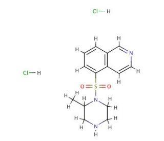 H-7, Dihydrochloride: sc-24009...
