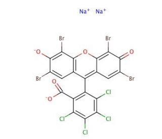 Phloxine B: sc-203753...