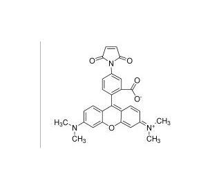 Tetramethylrhodamine-5-maleimide: sc-215961...