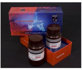 ImmunoCruz Western Blotting Luminol Reagent: sc-2048...